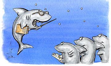 Pénzügyi ismeretek - SharkSchool2