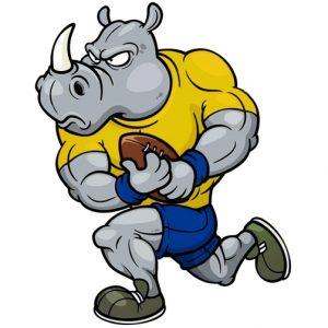 aszódi Rhinok